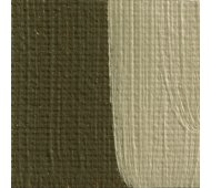 French Raw Umber Oil Paint